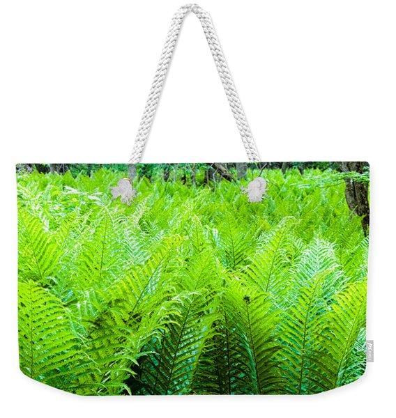 Forest Ferns   Weekender Tote Bag
