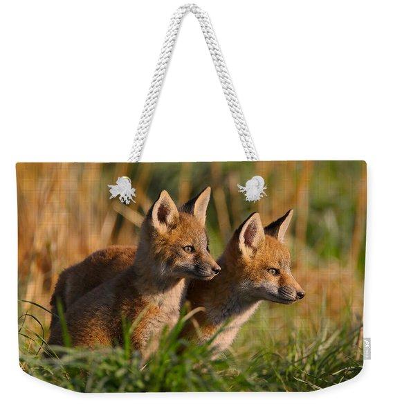 Fox Cubs At Sunrise Weekender Tote Bag