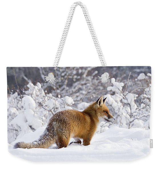 Fox In The Snow Weekender Tote Bag