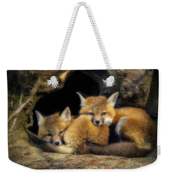 Best Friends - Fox Kits At Rest Weekender Tote Bag