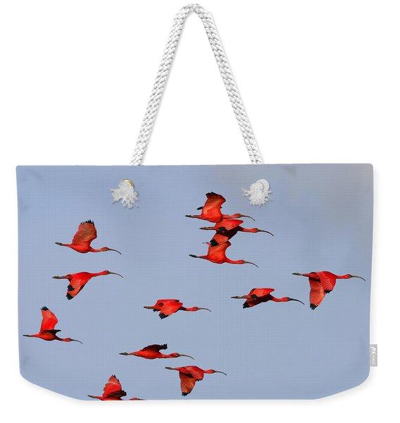 Frankly Scarlet Weekender Tote Bag