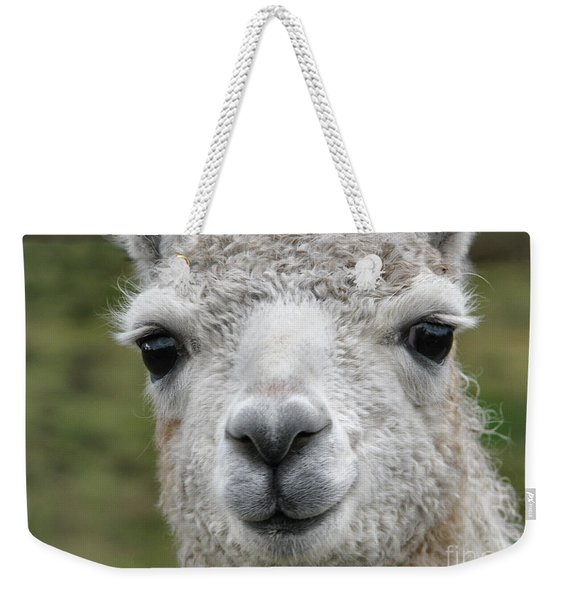 Friends From The Field Weekender Tote Bag