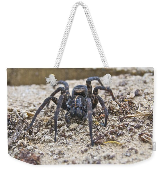 Garden Visitor 0808 Weekender Tote Bag