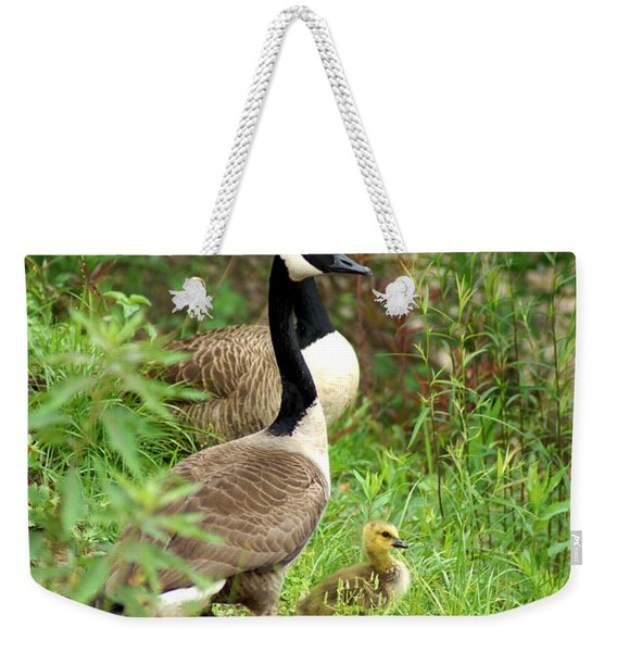 Geese And Gosling Weekender Tote Bag