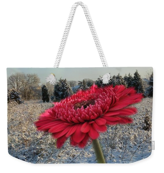 Gerbera Daisy In The Snow Weekender Tote Bag