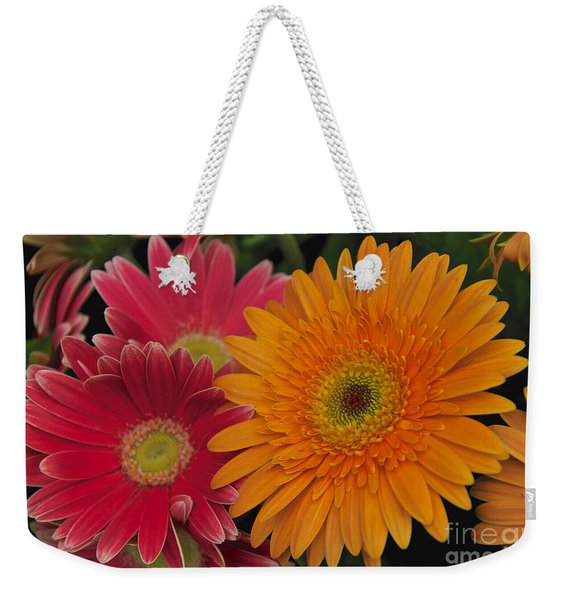 Weekender Tote Bag featuring the photograph Gerbera by William Norton