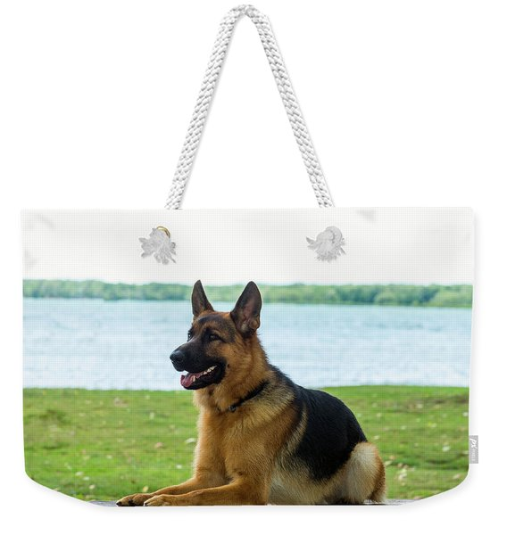 German Shepherd Dog Sitting By River Weekender Tote Bag
