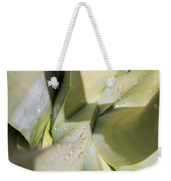 Giant Agave Abstract 3 Weekender Tote Bag