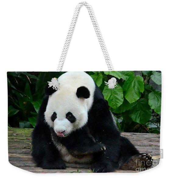 Giant Panda With Tongue Touching Nose At River Safari Zoo Singapore Weekender Tote Bag