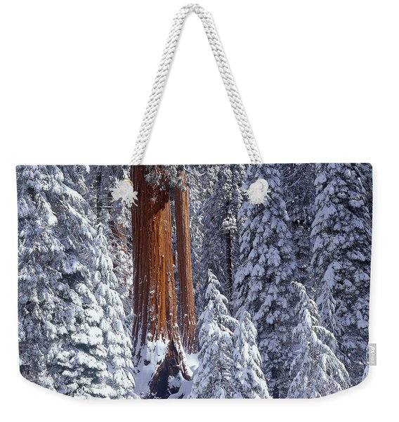 Giant Sequoia Trees Sequoiadendron Weekender Tote Bag