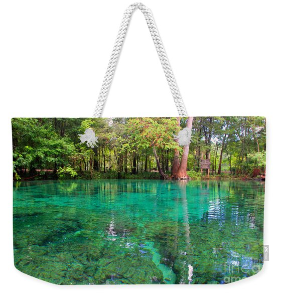 Ginnie Spring Along The Santa Fe Weekender Tote Bag