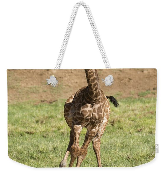 Giraffe Calf Running Weekender Tote Bag
