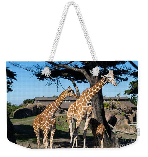 Giraffe Dsc2866 Weekender Tote Bag