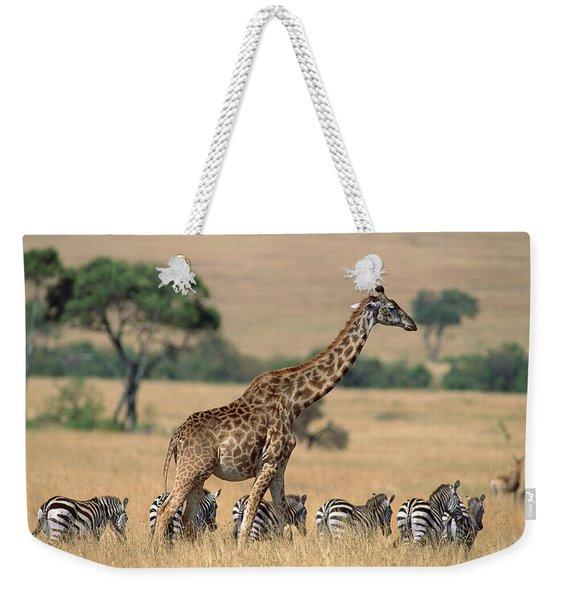 Giraffe Giraffa Camelopardalis Weekender Tote Bag