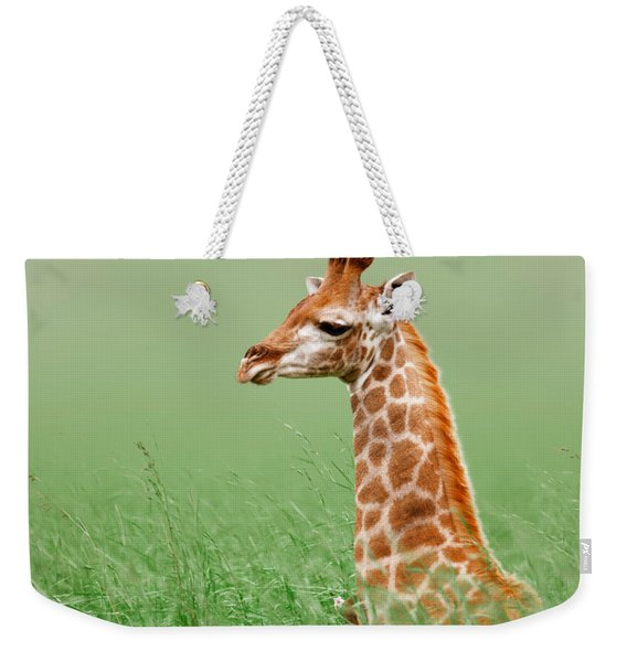 Giraffe Lying In Grass Weekender Tote Bag