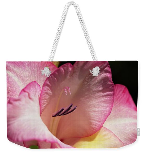 Gladiolus In Pink Weekender Tote Bag