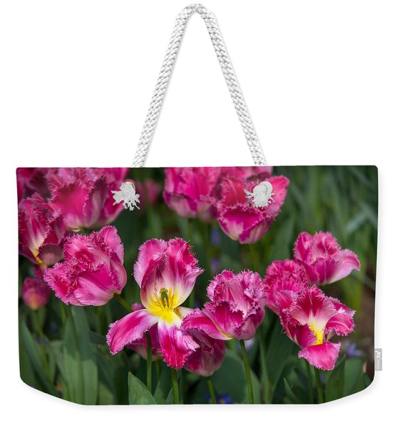 Glorious Tulips Display In Keukenhof Botanical Garden 2. Netherlands Weekender Tote Bag