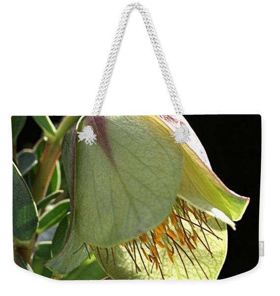 Glow Of The Bell Weekender Tote Bag