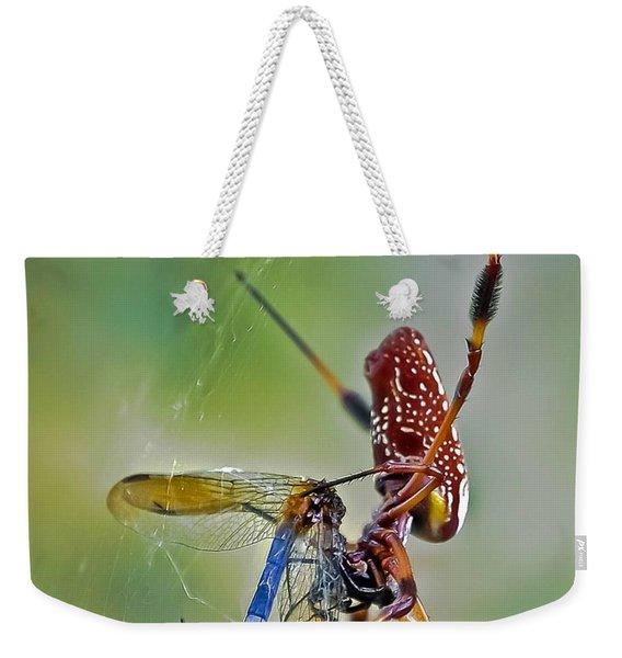 Golden Silk Orb With Blue Dragonfly Weekender Tote Bag