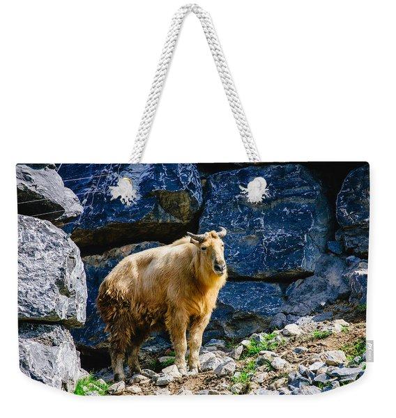 Golden Takin Weekender Tote Bag