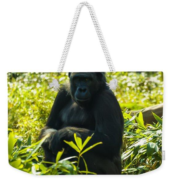 Gorilla Sitting On A Stump Weekender Tote Bag