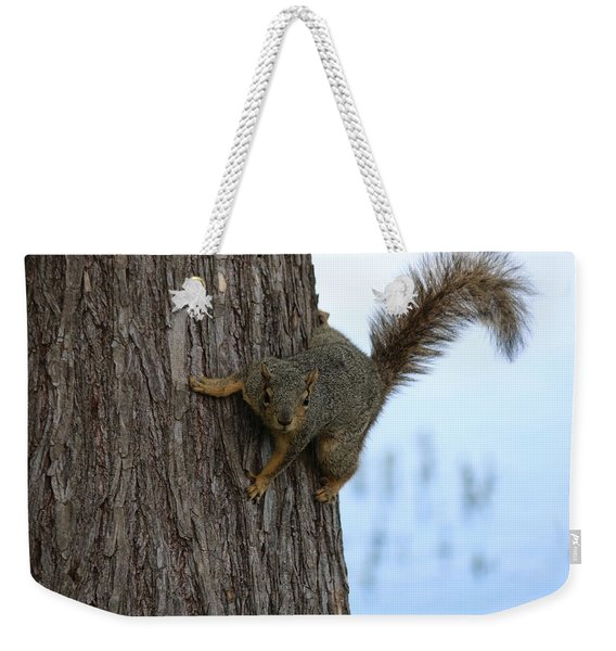 Lookin' For Nuts Weekender Tote Bag