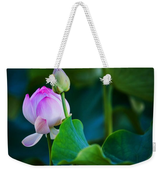 Graceful Lotus. Pamplemousses Botanical Garden. Mauritius Weekender Tote Bag