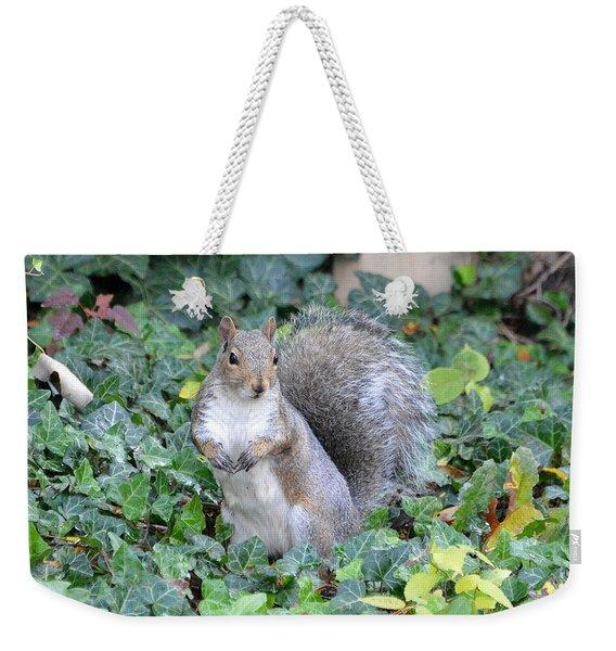 Graceful Squirrel Weekender Tote Bag