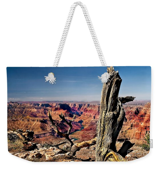 Grand Canyon And Old Tree Weekender Tote Bag
