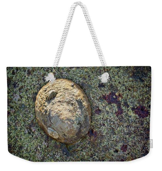 Great Owl Limpet Weekender Tote Bag