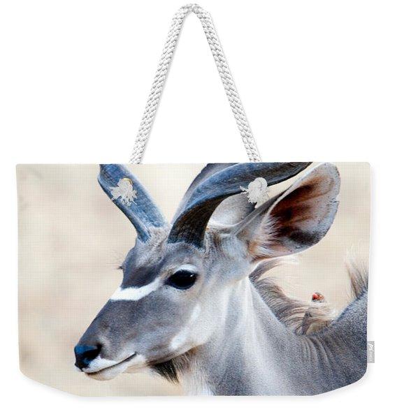 Greater Kudu Tragelaphus Strepsiceros Weekender Tote Bag
