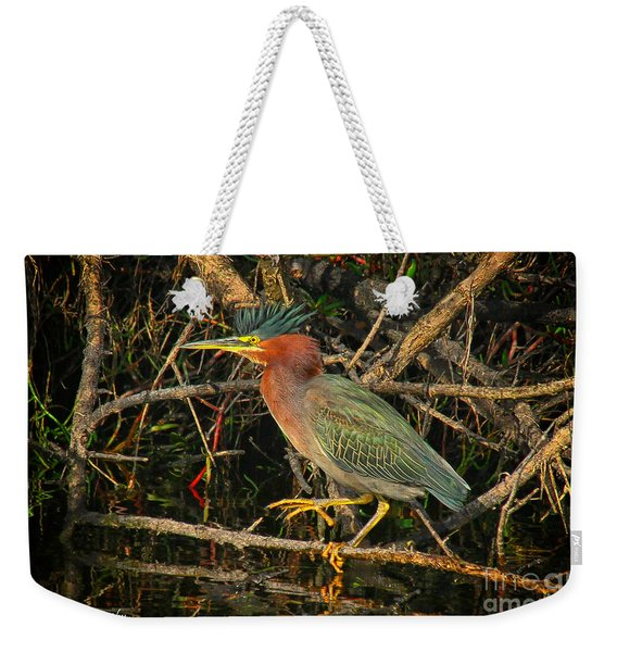 Green Heron Basking In Sunlight Weekender Tote Bag