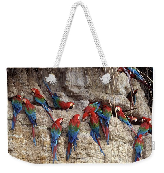 Green-winged Macaw Weekender Tote Bag