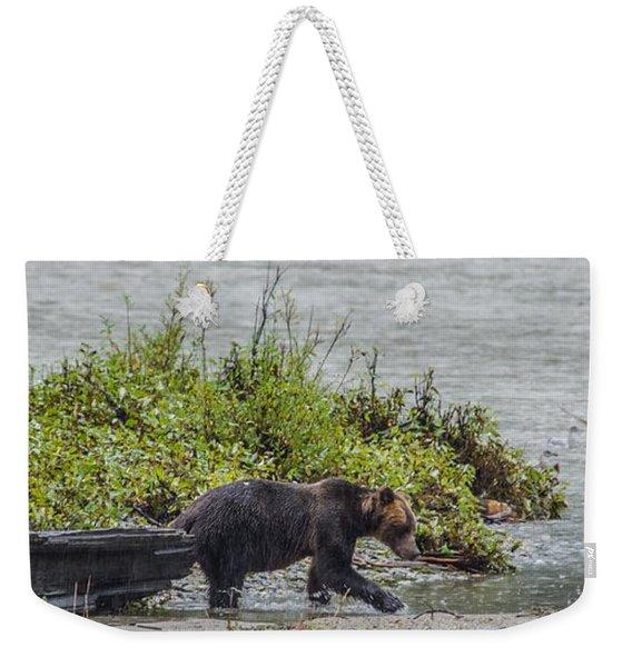 Grizzly Bear Late September 4 Weekender Tote Bag