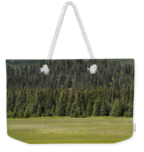 Grizzly Bear Mother And Cubs In Meadow Weekender Tote Bag