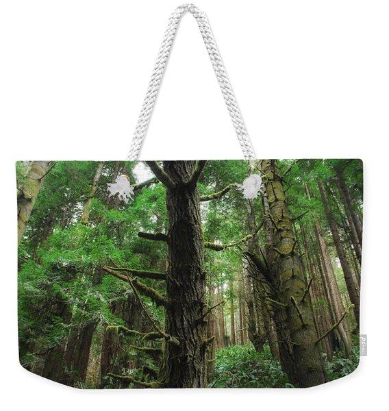 Groovin With The Redwoods Weekender Tote Bag