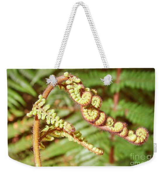 Growing Fern Weekender Tote Bag