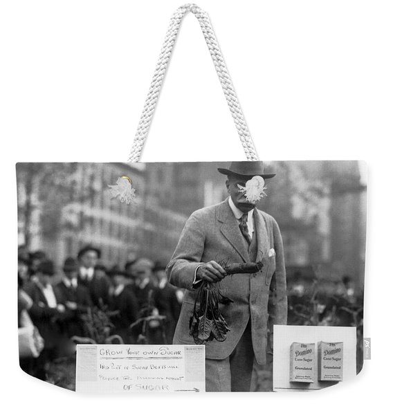Growing Sugar In New York City Weekender Tote Bag