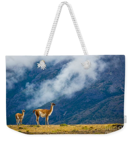 Guanaco Mother And Child Weekender Tote Bag