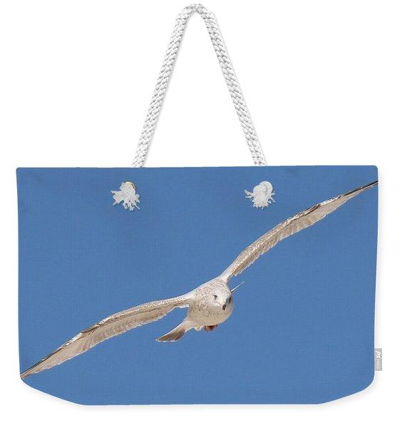 Gull In Flight  Weekender Tote Bag