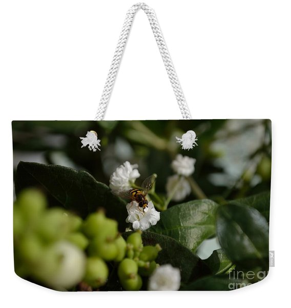 Weekender Tote Bag featuring the photograph Gypsophilia Hover Fly by Scott Lyons