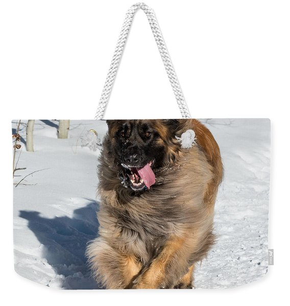 Happy Leonberger Winter Trail Running Weekender Tote Bag
