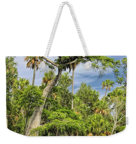 Hatrack Cypress Weekender Tote Bag