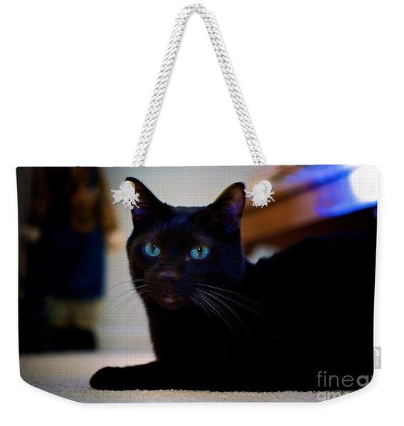 Havana Brown Cat Weekender Tote Bag