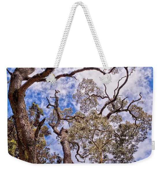 Weekender Tote Bag featuring the photograph Hawaiian Sky by Jim Thompson