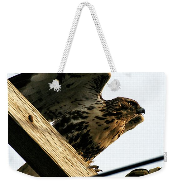 Weekender Tote Bag featuring the photograph Hawk On Telephone Pole by William Selander
