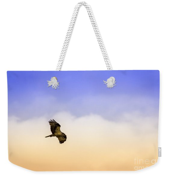 Hawk Over Head Weekender Tote Bag