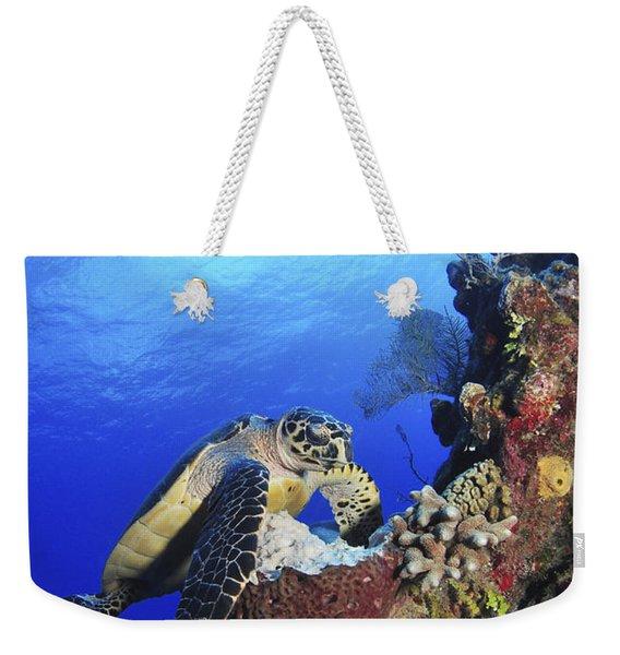 Hawksbill Sea Turtle And Gray Angelfish Weekender Tote Bag