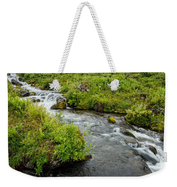 Weekender Tote Bag featuring the photograph Headwaters In Summer by Tim Newton