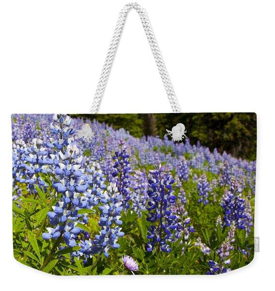 Heavenly Blue Lupins Weekender Tote Bag